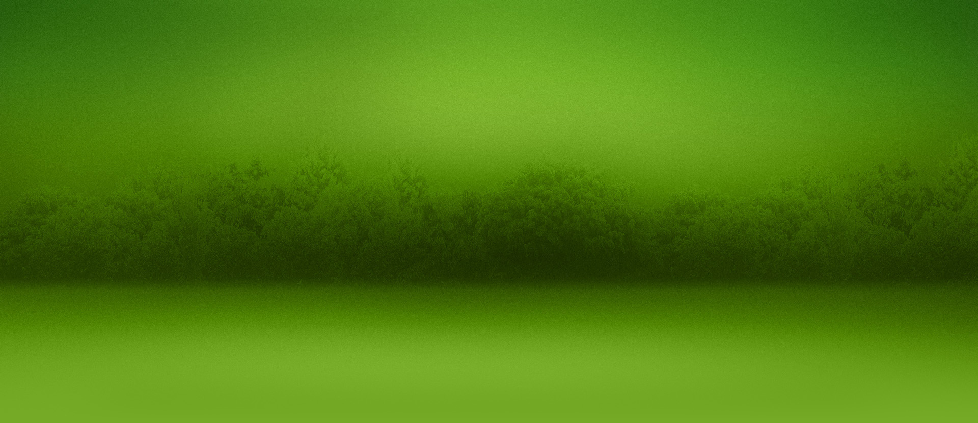 green-forest1